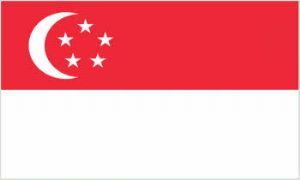 Singapore Large Country Flag - 3' x 2'.